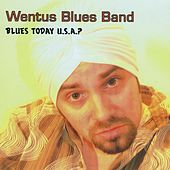Blues Today U.S.A. de Wentus Blues Band