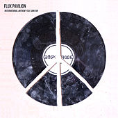 International Anthem (feat. Doctor) by Flux Pavilion