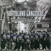 Southern Comfort de Various Artists