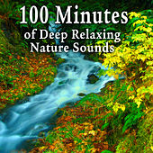 100 Minutes of Deep Relaxing Nature Sounds by Nature Soundscape