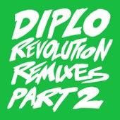 Revolution (Remixes Part 2) by Diplo