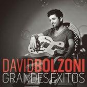 Grandes Éxitos de David Bolzoni