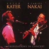 Improvisations In Concert de Peter Kater