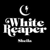 Sheila di White Reaper