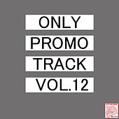 Only Promo Track, Vol. 12 by Various Artists