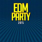 EDM Party 2015 by Various Artists