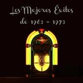 Los Mejores Éxitos de 1963 - 1973 by Various Artists