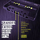 Grandes Éxitos de los 80's, Vol. 1 by Various Artists