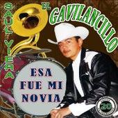 Esa Fue MI Novia by Saul Viera el Gavilancillo