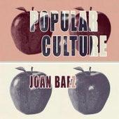 Popular Culture de Various Artists