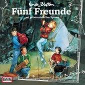 018/auf geheimnisvollen Spuren von Fünf Freunde