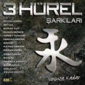 3 Hürel Şarkıları (Sonsuza Kadar) von Various Artists
