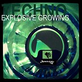 Techno Explosive Growing by Various Artists