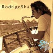 Sha Summer Melody by Rodrigo Sha