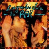Les grandes voix du raï by Various Artists