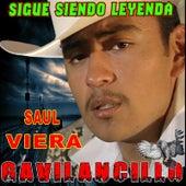 Sigue Siendo Leyenda by Saul Viera el Gavilancillo