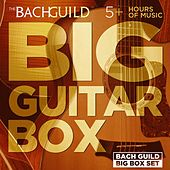 Big Guitar Box by Various Artists