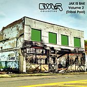 Jak Is Bak: BWLR Collective, Vol. 2 (Tribal Pool) - EP by Various Artists