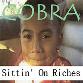 Sittin' on Riches by Cobra