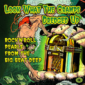 Look What the Cramps Dredged Up: Rock'n'roll Pearls from the Big Beat Deep by Various Artists