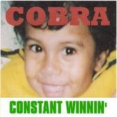 Constant Winnin' by Cobra