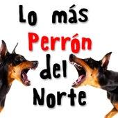 Lo Más Perrón del Norte by Various Artists