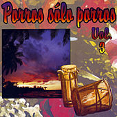 Porros Sólo Porros, Vol. 3 de Various Artists