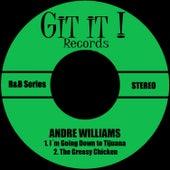 I´m Going Down to Tijuana de Andre Williams