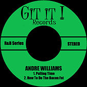 Pulling Time de Andre Williams