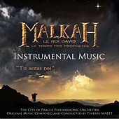 Malkah - Le roi David - Le temps des prophètes by Various Artists