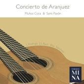 Concierto de Aranjuez by Santi Pavón