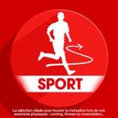 Sport : La sélection idéale pour trouver la motivation lors de vos exercices physiques : running, fitness ou musculation... de Various Artists