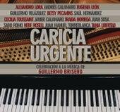 Caricia Urgente: Celebración a la Música de Guillermo Briseño de Various Artists