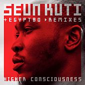 Higher Consciouness (remixes) di Seun Kuti
