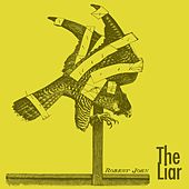 The Liar by Robert John