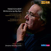 Schubert: Winterreise, Op. 89, D. 911 (Arr. J. Josef for Voice & String Quartet) [Audio Version] von Peter Schreier
