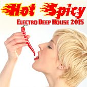 Hot Spicy Electro Deep House 2015 by Various Artists