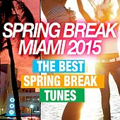 Spring Break Miami 2015 (The Best Spring Break Tunes) by Various Artists