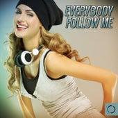 Everybody Follow Me von Various Artists