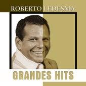 Grandes Hits: Roberto Ledesma de Roberto Ledesma