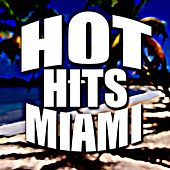 Hot Hits Miami 2015 by Various Artists