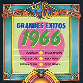 Grandes Éxitos 1966 de Various Artists