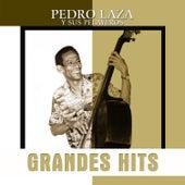 Grandes Hits: Pedro Laza y Sus Pelayeros de Various Artists