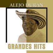 Grandes Hits: Alejo Durán de Alejandro Durán y su Conjunto