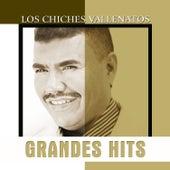 Grandes Hits: Los Chiches Vallenatos de Amín Martínez