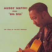 Sings Big Bill Broonzy (Remastered) di Muddy Waters