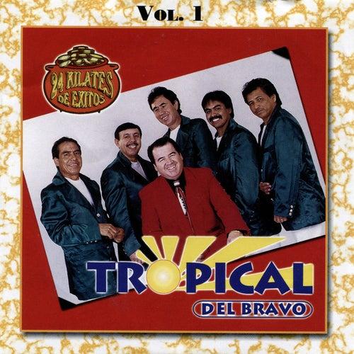 24 Kilates de Exitos, Vol. 1 by Tropical Del Bravo