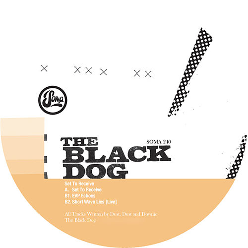 Set to Receive ep by The Black Dog