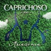 Caprichoso 2015 - Amazonia de David Assayag