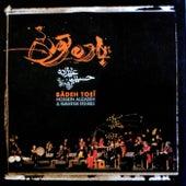 Badeh Toei by Hossein Alizadeh